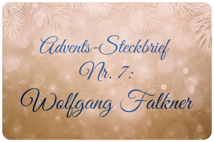 Adventskalender Wolfgang Falkner