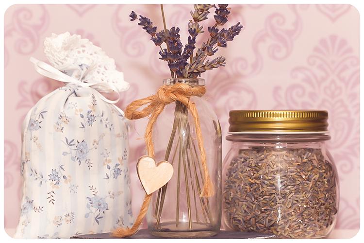 duftpflanze des jahres 2016 lavendel aromatherapie