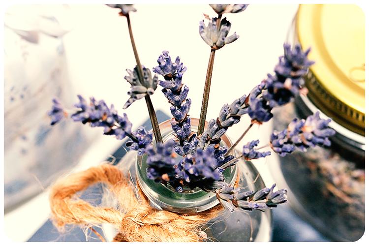 duftpflanze des jahres 2016