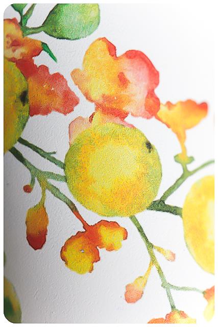 herbs and flowers naturkosmetik blog sommerrätsel 10