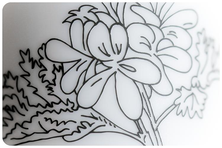 herbs and flowers naturkosmetik blog sommerrätsel 6