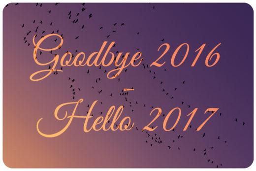 blog jahresrückblick 2016