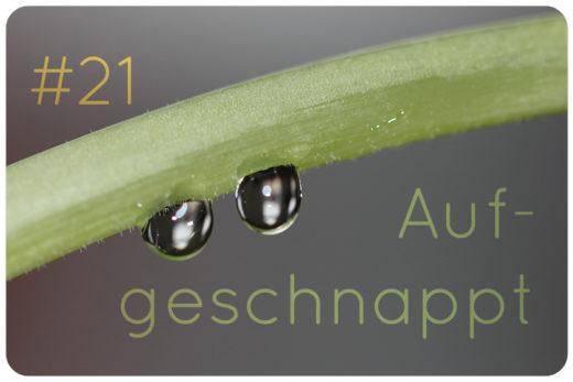 naturkosmetik blog news