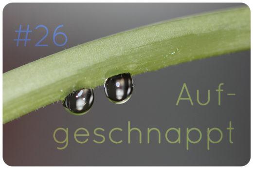 aufgeschnappt naturkosmetik blog news 26