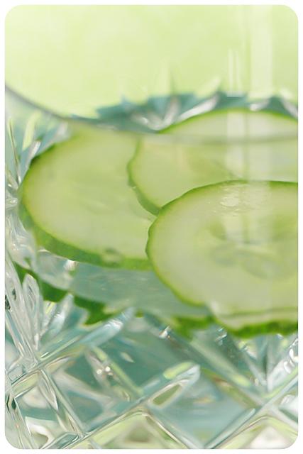 gurkenwasser 2