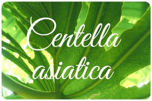 Kosmetik Centella Asiatica